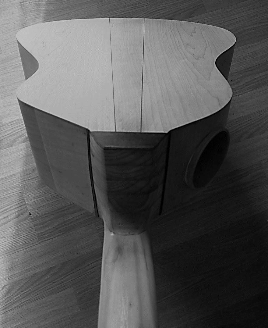 Back of acoustic bass